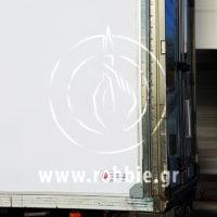 truckskinz delta (7)